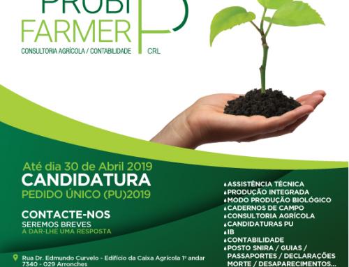 Candidaturas PU 2019 a decorrer até dia 30-04-2019